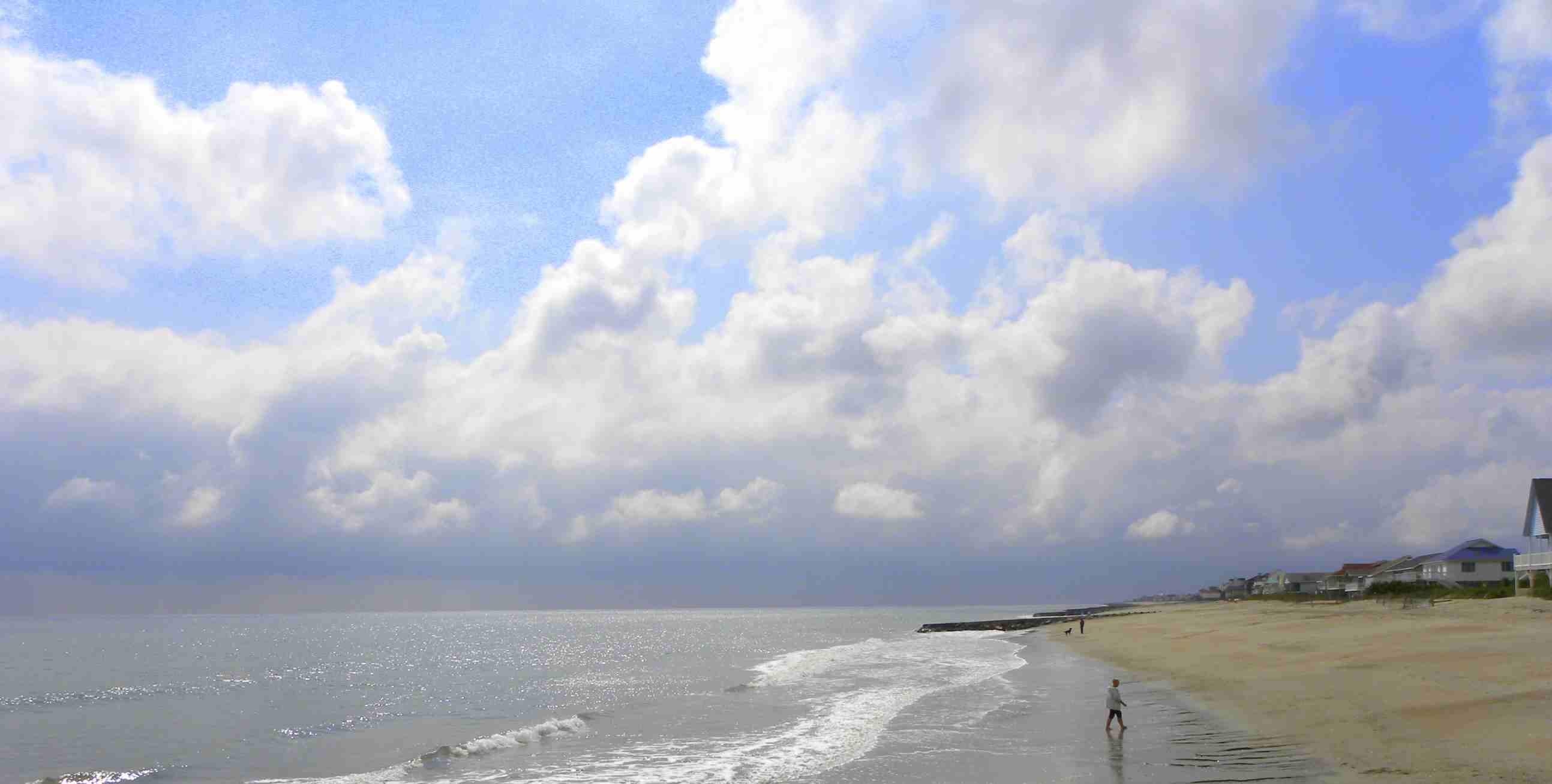 The Edisto Beach Advisor The Inside Story To Edisto Beach Real Estate